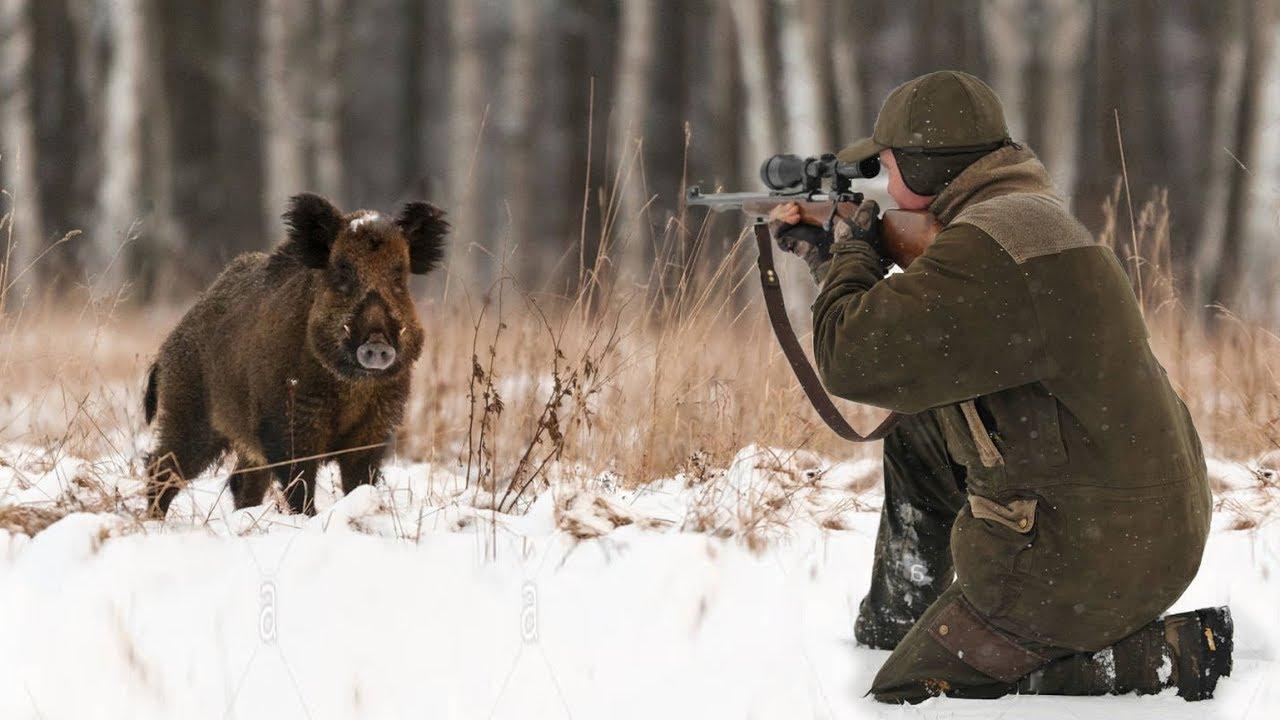 Buona vista-la chiave per una caccia di successo